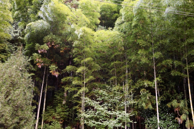 21 Tsumago-Japan-Photo by © Petr Horcicka