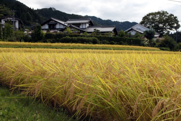 25 Tsumago-Japan-Photo by © Petr Horcicka